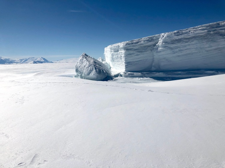 Glacier above the sea ice at Cape Hallett