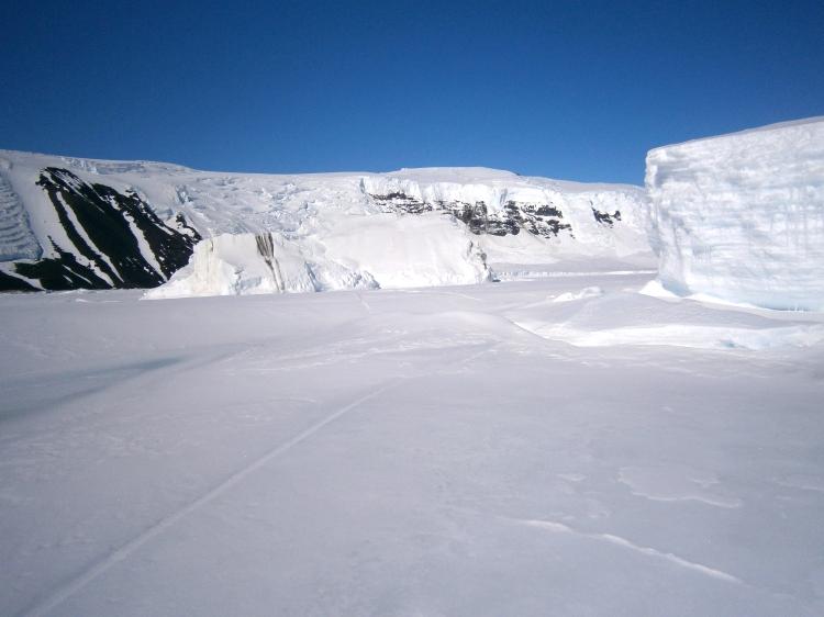 Glacier at Cape Hallett