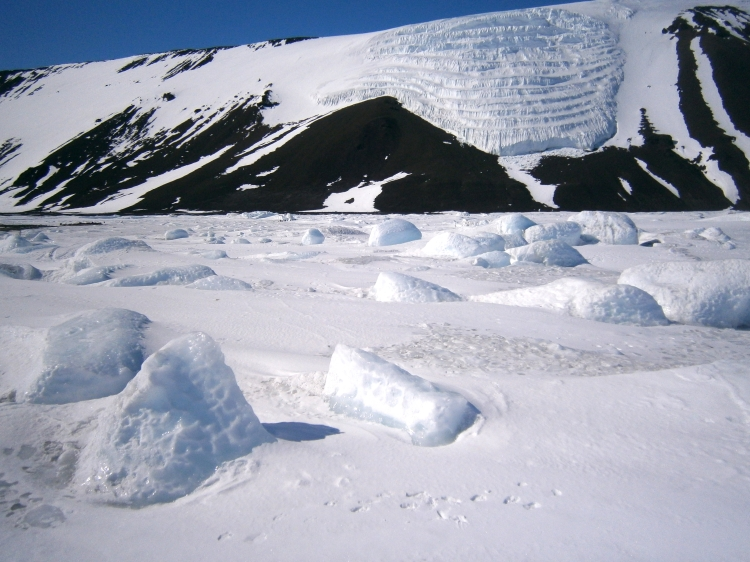 Ice field at Cape Hallett